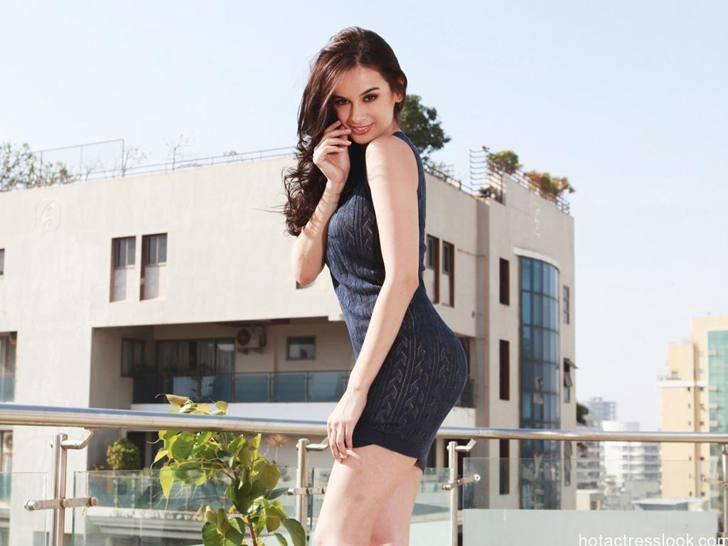 Evelyn Sharma in Sexy Pose