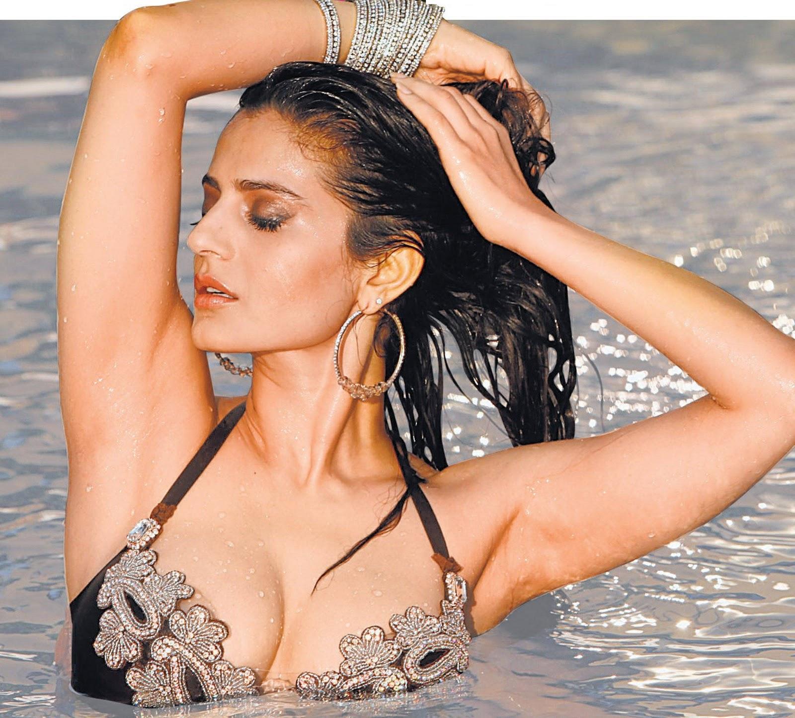 Amisha Patel Hot Boobs Pics ameesha patel sexy photos and wallpapers in bikini hd