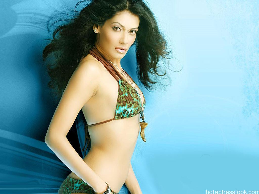 sexy-payal-rohatgi in bikini
