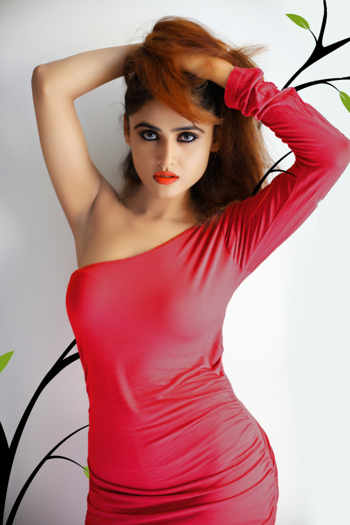 sony-charishta-latest hot pics