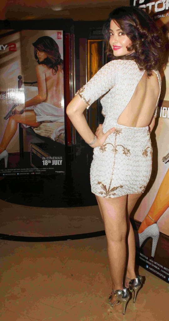 surveen-chawla hot photos in backless dress