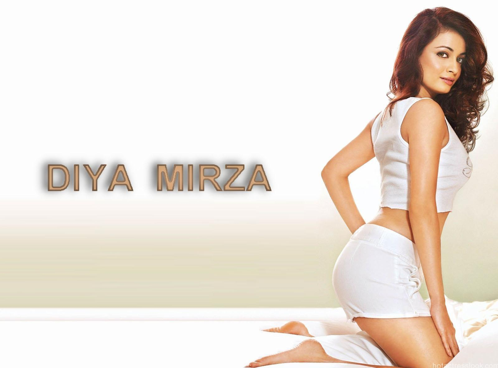 Dia Mirza hot pose
