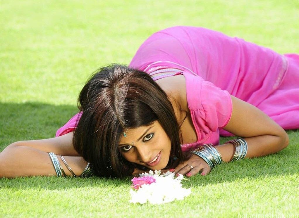 Genelia D'Souza hot and sexy pic