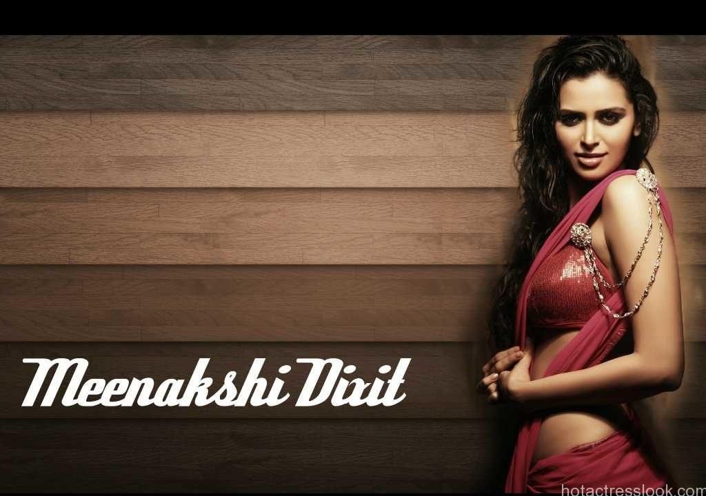 Meenakshi Dixit hot stills