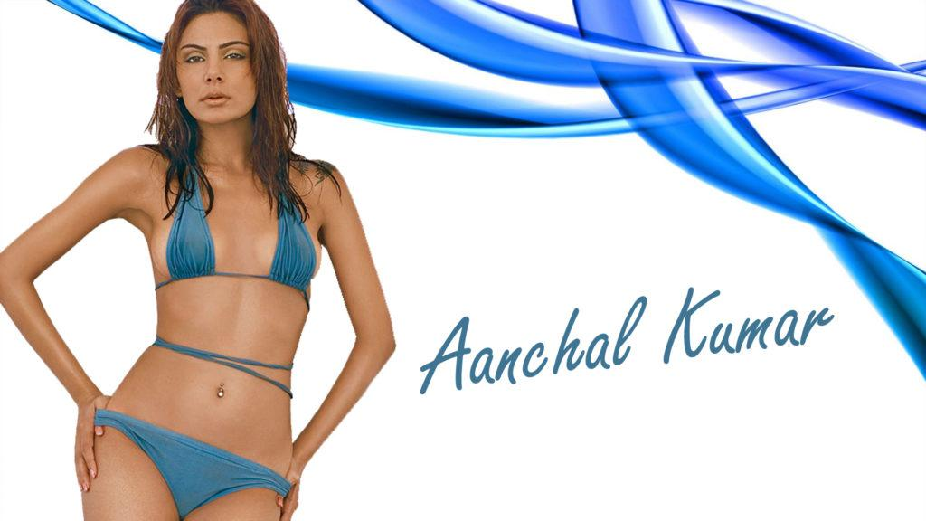 hot-aanchal-kumar-in-bikini-HD