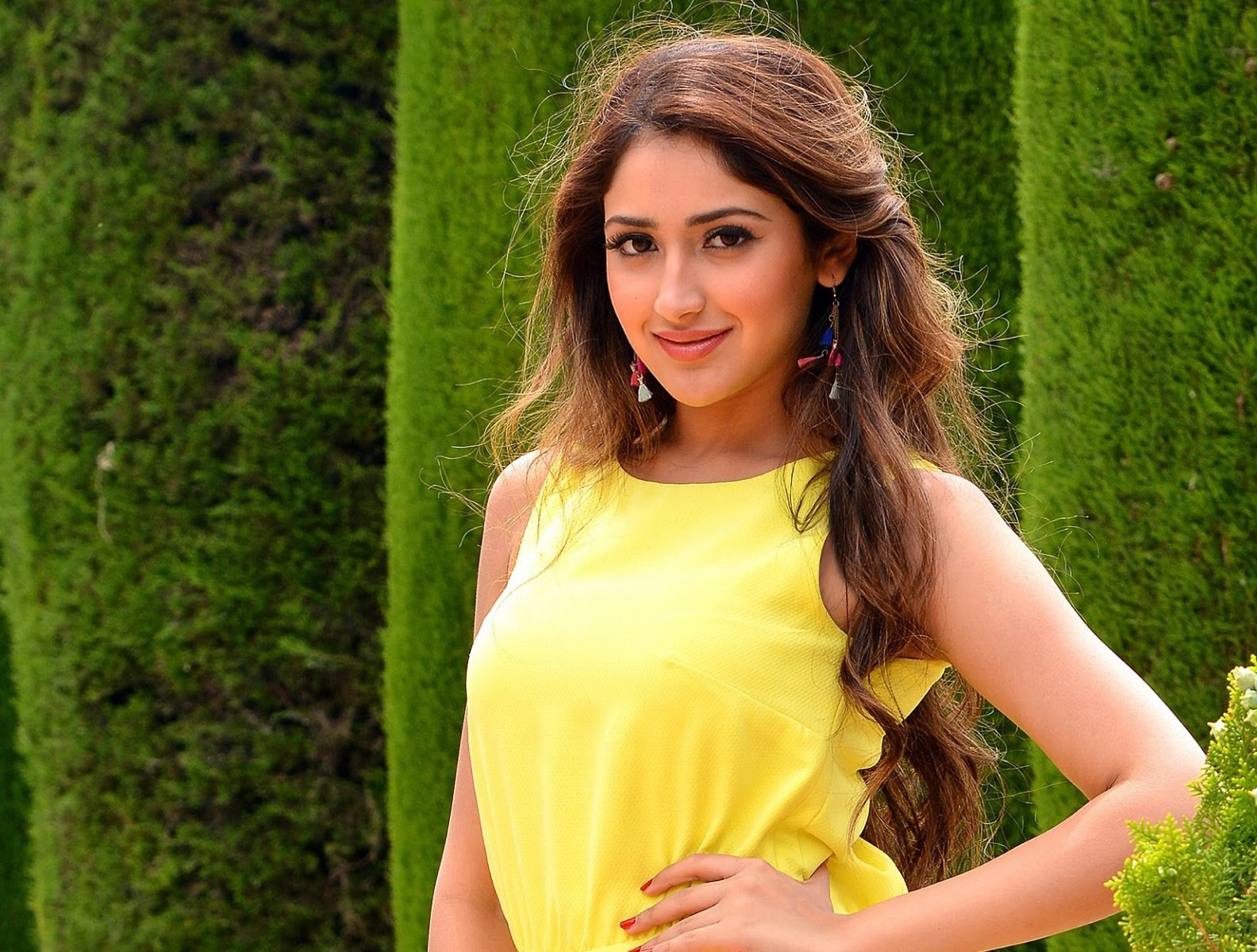 Sayesha Saigal Hot Wallpapers And Photos In Bikini