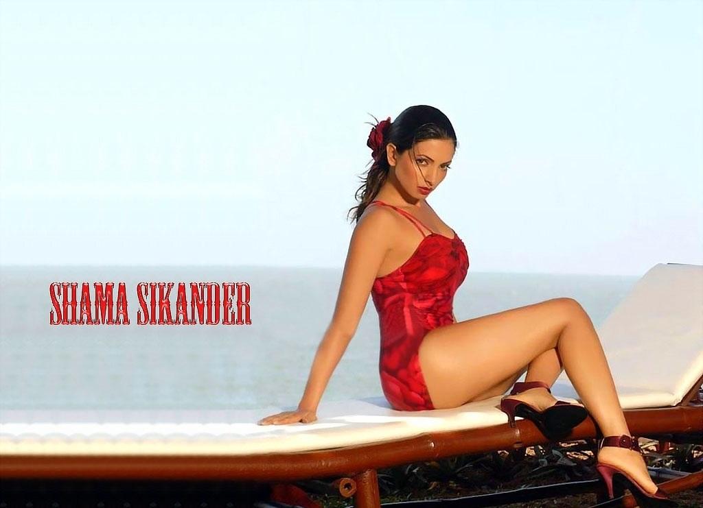 Shama Sikander Sexy images in bikini