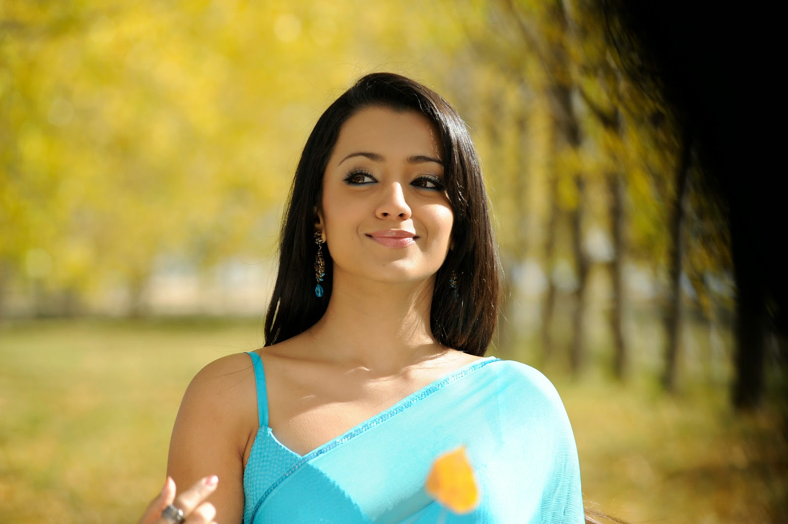 Trisha hot image in Saree
