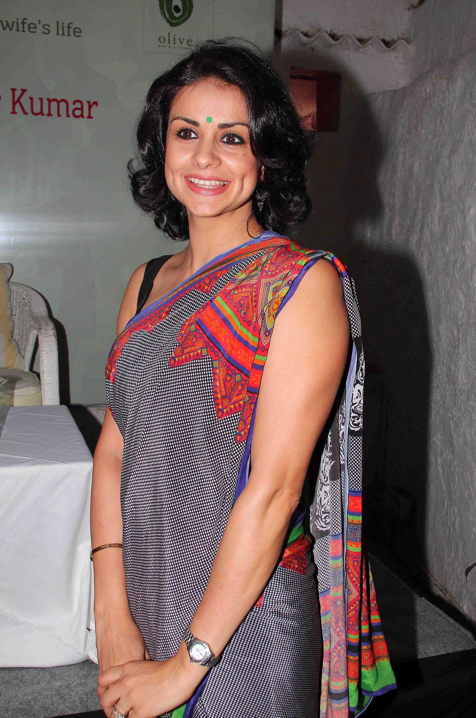Gul Panag hot in saree