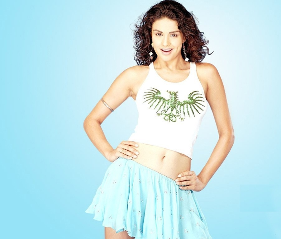 Gul Panag hot wallpaper in lingerie