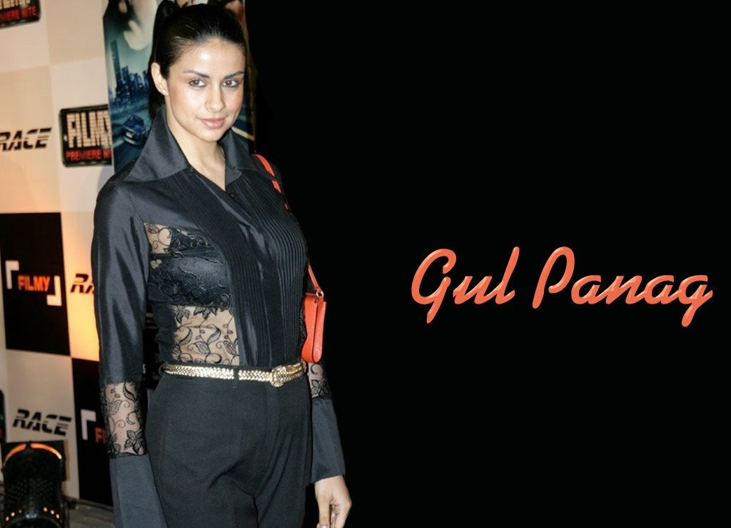 Gul Panag hot wallpapers in saree