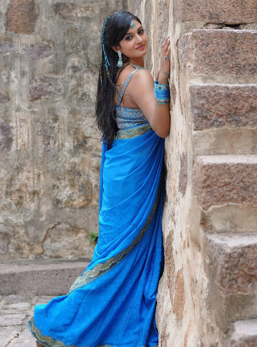 Vimala Raman hot in saree