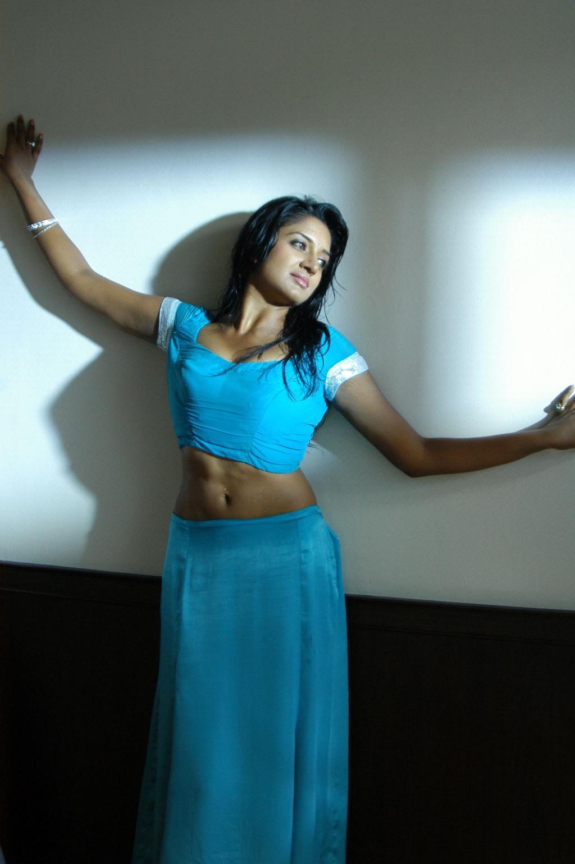 Vimala Raman hot pose in saree