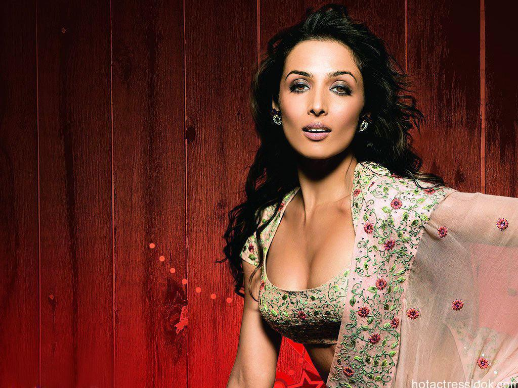 Malaika arora khan hot and sexy wallpapers in bikini - Desi actress wallpaper ...