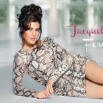 hot-jacqueline-fernandez-high-definition-desktop-wallpaper-background-photos-free