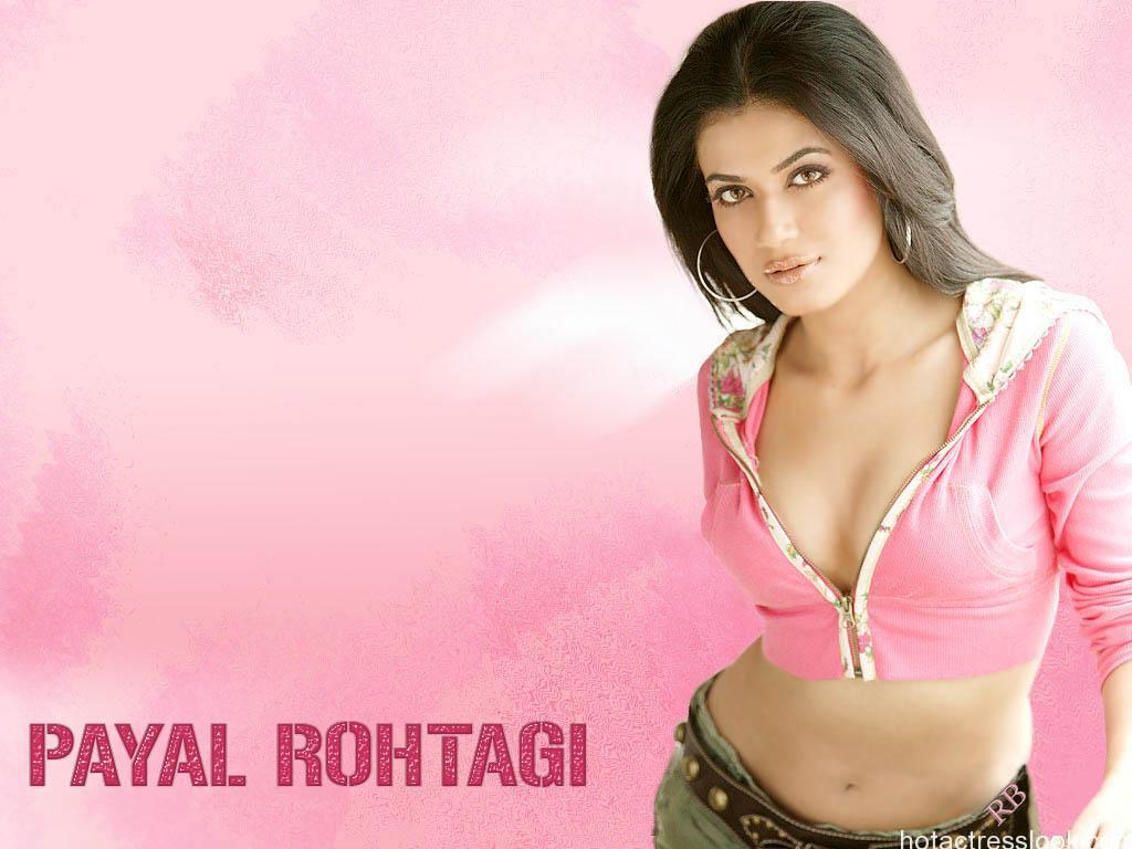 sexy-payal-rohatgi hot photo