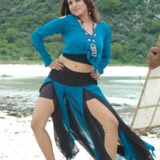 Aditi Agarwal hot and sexy pics