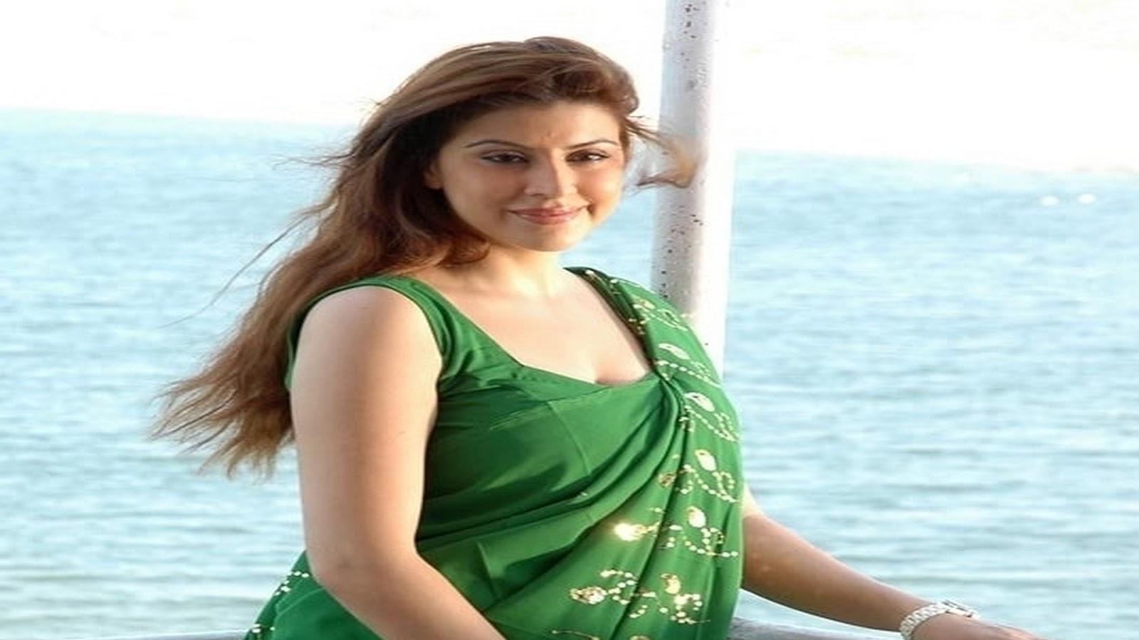 Karishma Kotak hot stills in saree