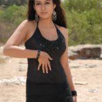 Nayanthara Hot wallpapers in bikini