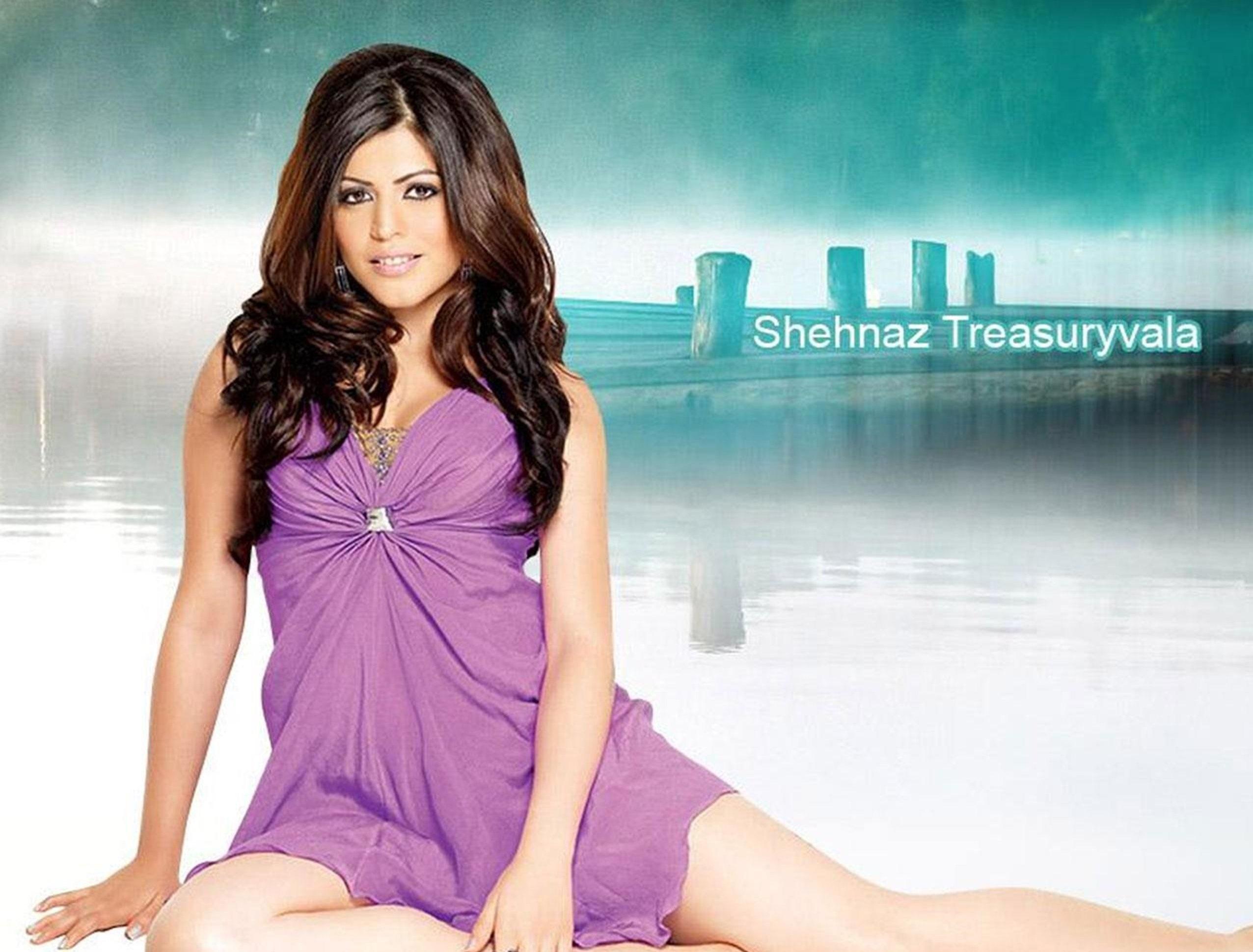 Shenaz Treasurywala hot in bikini