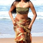 priyamani very hot and sexy pics