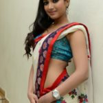 catherine-tresa-in-saree