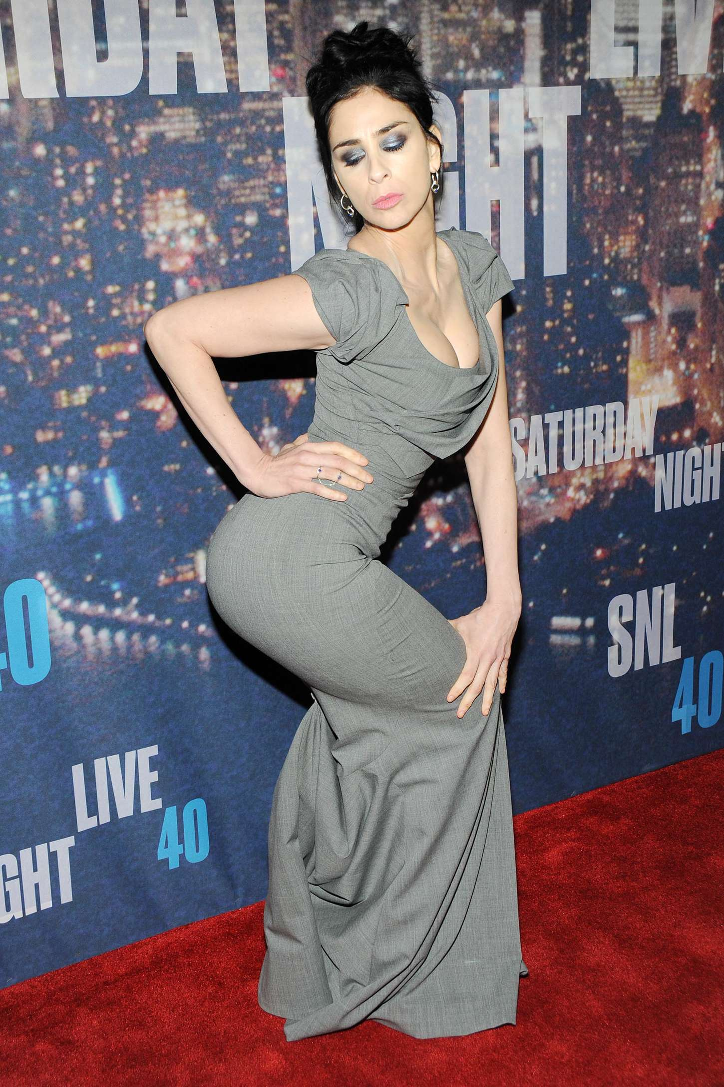 60+ Sexy Sarah Silverman Boobs Pictures Which Are Simply