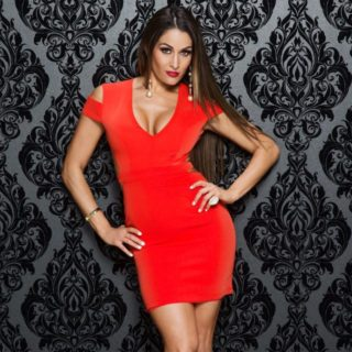 Nikki Bella bella twins